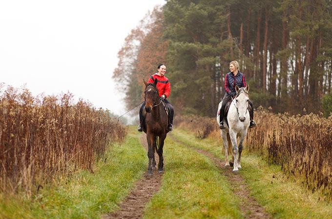 Cours d'équitation collectifs à La Croix Saint-Ouen