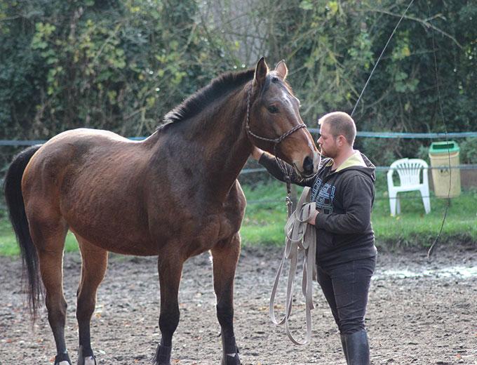 Cours d'équitation individuels à La Croix Saint-Ouen