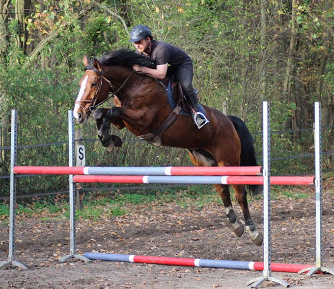 Entretien physique de votre cheval à Compiègne