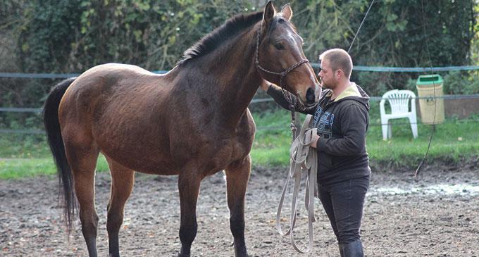 Cavalier et moniteur d'équitation indépendant à La Croix Saint-Ouen