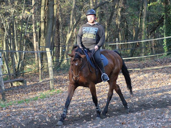 Prestations et tarifs des prestations équitation à Compiègne